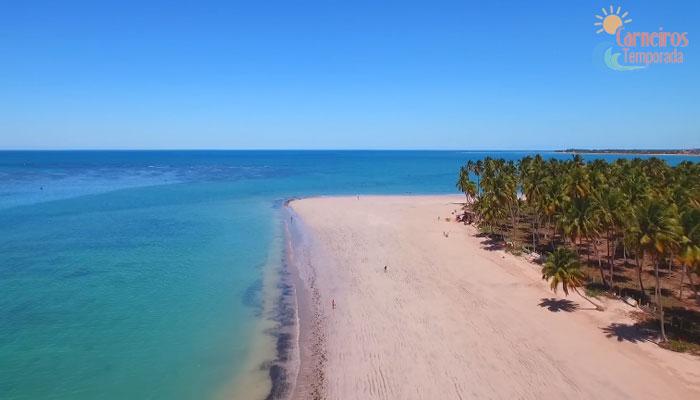 Carneiros Temporada – Praia dos Carneiros Pernambuco